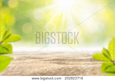 Blur Green Nature Bokeh Leaf With Sun Light On Copy Space Sand Texture Background.