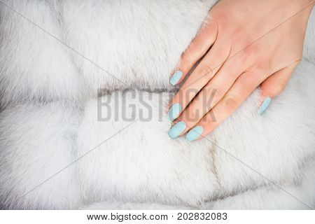 Hand on fur textured background. Blue manicure on female nails. Natural animal silver hair coat. Skin care and beauty. Winter fashion concept