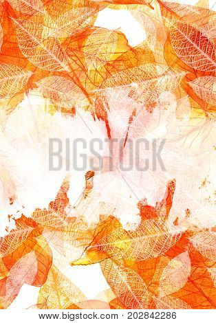 An autumn background with vibrant watercolor leaves and a white brush stroke for copy space. A3, A4 or like poster, invitation, or greeting card design template with a place for text and fall motifs poster