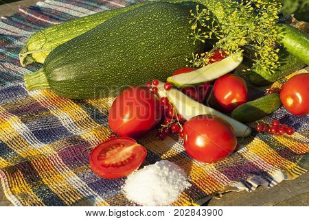 Appetizing organic zucchini, cucumbers, tomatoes lie on a tablecloth on a wooden table in the garden together with greens, berries and a handful of salt on a sunny day