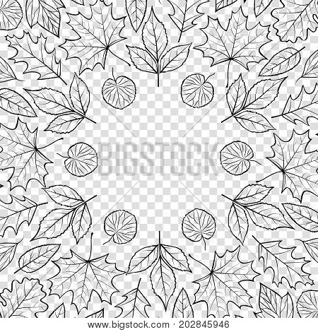 Pattern with autumn leaves on transparent background.Autumn background. Vector illustration.