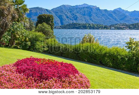 Italy Tremezzo view of the Como lake from a garden
