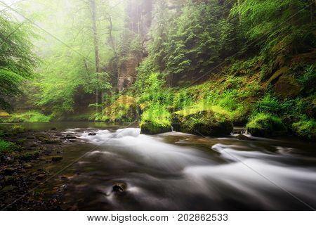 Rainy Autumn Season. River View At Edmund Gorge Of Bohemian Switzerland National Park, Czech Republi