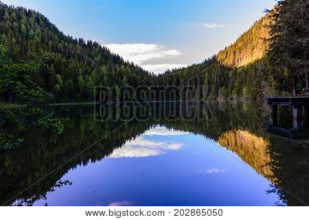 an mirroring pond in the middle of a forest in the mountains