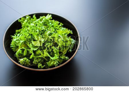 kale green salad spinach kale chips lettuce curly kale salad salad bowl leafy green healthy bowl dinner lunch vegetarian plate meal cooking super vegan cabbage plant agriculture background closeup curly diet eating food fresh freshness garden harvested in