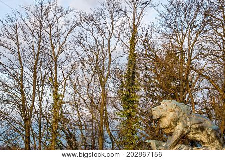 Bronze lion on the Schlossberg Hill in Graz