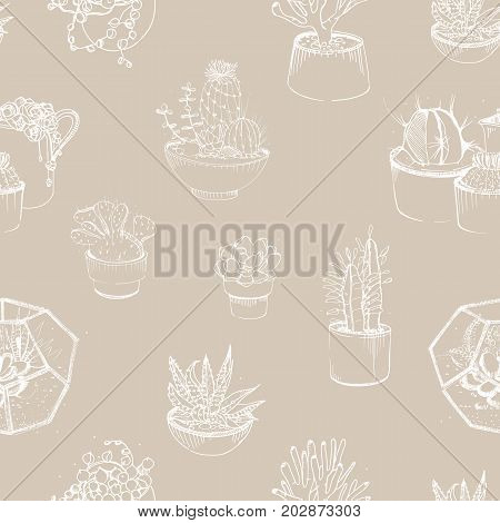 Modern seamless pattern with succulent outlines hand drawn on gray background. Desert plants growing in clay pots and glass vivariums. Vector illustration for wallpaper, backdrop, fabric print
