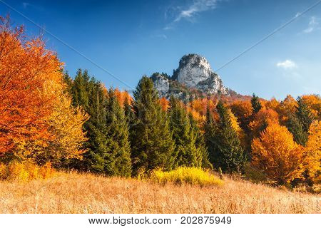 Autumn Landscape With A Blue Sky With Puffs, Rocks And Trees In