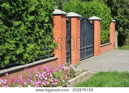 Green Fence with Entrance Door Metal Gate and Trimmed Green Thuja.
