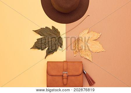 Fall Fashion Glamour Lady Look.Trendy Handbag Clutch. Fashion Stylish Glamour Hat. Fall Leaves. Autumn Minimal. Vanilla Pastel colors. Vintage