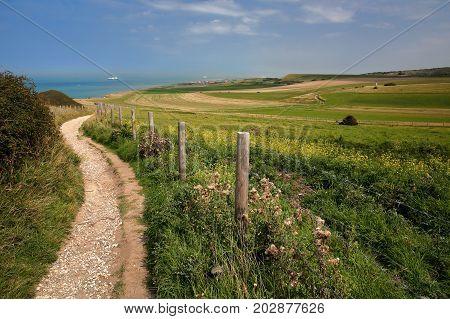 A coastal path with colorful surrounding fields near Cap Blanc Nez, Cote d'Opale, Pas de Calais, Hauts de France, France