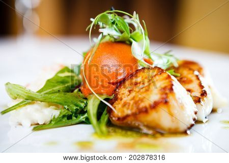 Haute cuisine, Gourmet food scallops with vegetables and salad