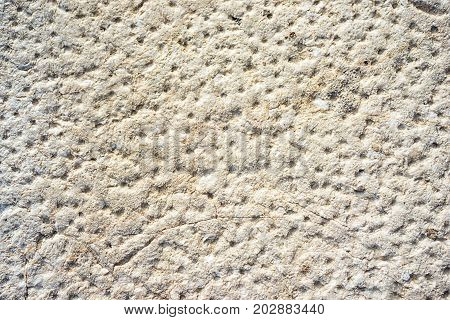 Beige neutral stone wall with lots of holes texture