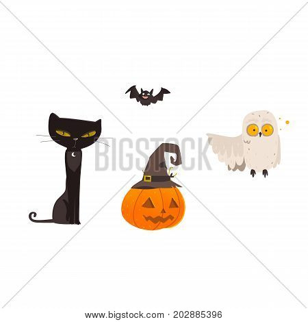 Halloween objects - spooky black cat, crazy owl, flying bat, pumpkin lantern in witch pointy hat, cartoon vector illustration isolated on white background. Cartoon cat, owl, Halloween pumpkin and bat