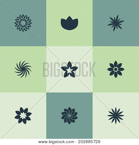 Elements Alstroemeria, Jonquil, Peony And Other Synonyms Larkspur, Aster And Blossoming.  Vector Illustration Set Of Simple Blossom Icons.