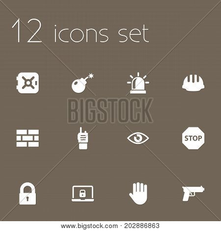 Collection Of Hardhat, Dynamite, Firewall And Other Elements.  Set Of 12 Procuring Icons Set.