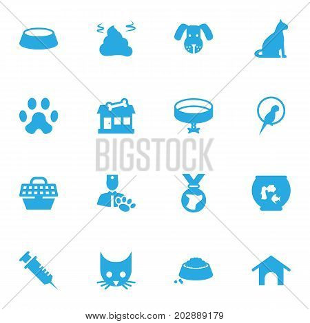 Collection Of Footprint, Store, Fishbowl And Other Elements.  Set Of 16 Mammal Icons Set.