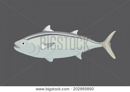 Tuna fish in flat style. Cool vector illustration for print, web, menu or package. Seafood design element