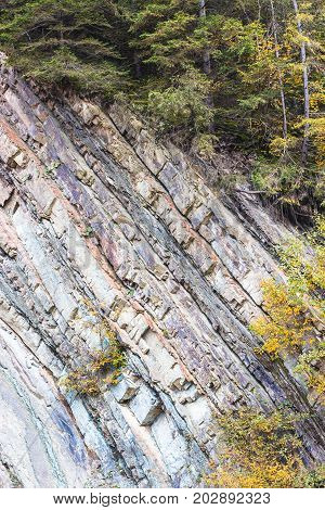 Metamorphic Rock Layers Texture In Carpathian Mountains