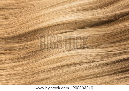 Blonde Hair. Blond Hair Texture, Woman Haircare concept