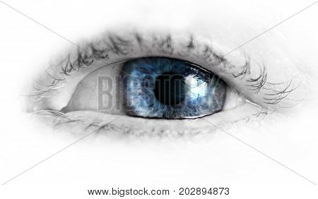 beautiful human eye macro close up blue yellow brown
