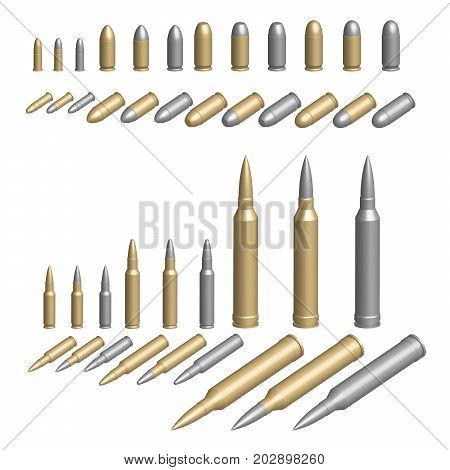 Variety of bullets illustrated in brass silver or steel casings
