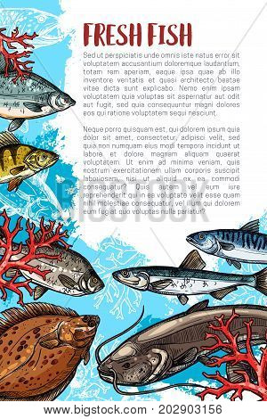 Fresh fish poster for sea food or fish market. Vector fishing or fisherman catch of trout, salmon or tuna and herring, ocean mackerel or marlin and flounder or sprats with pike or perch and carp