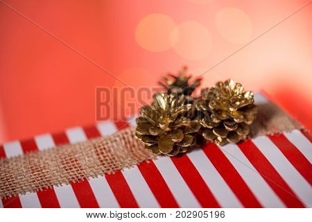 Striped Gift Box With Pinecones