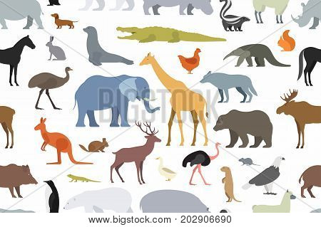 pattern with different animals in flat style on white background