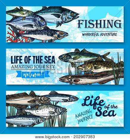 Fishes banners for fishing club or fisherman adventure journey to sea life. Vector ocean trout, salmon or mackerel and marlin, flounder or tuna and herring sprats with sheatfish and eel or carp