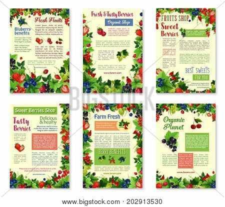 Berries or fruit shop posters or brochure templates. Vector set of strawberry, raspberry or forest blueberry and blackberry, cranberry or garden cherry and organic red currant and blackcurrant berries