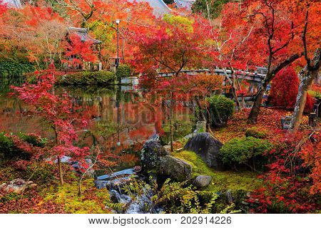Eikan-do Garden With Red Fall Colors, Kyoto
