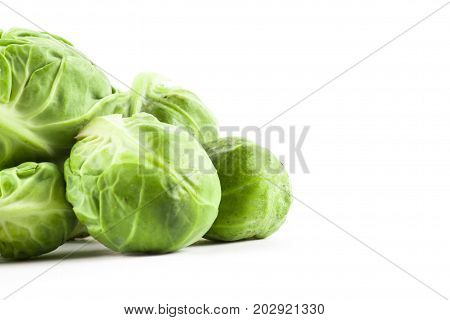 Fresh Green Brussels Cabbage
