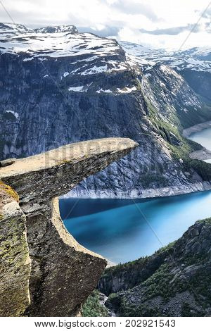 Norway Troll's Tongue