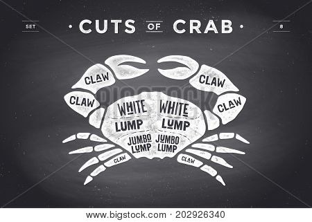 Cut of meat set. Poster Butcher diagram and scheme - Crab. Vintage typographic hand-drawn visual guide for butcher shop on chalk black background. Vector illustration