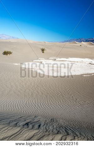 Beautiful view of the Mesquite Flat Sand Dunes in Death Valley National Park in California
