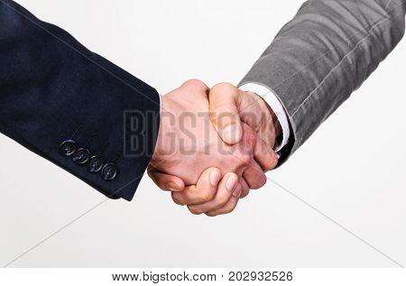 Two businessmen handshaking on gray background