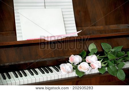 Brown piano, bouquet of five pale pink roses on keyboard, music paper and white blank sheet  with pink quill pen.