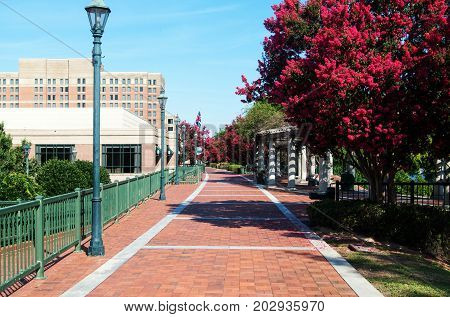 Augusta Riverwalk with cobble stone  in the summer time
