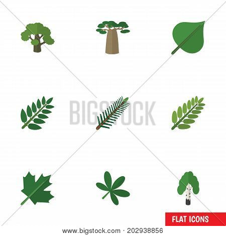 Flat Icon Ecology Set Of Oaken, Baobab, Timber And Other Vector Objects