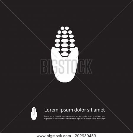 Corny  Vector Element Can Be Used For Maize, Corn, Corny Design Concept.  Isolated Maize Icon.