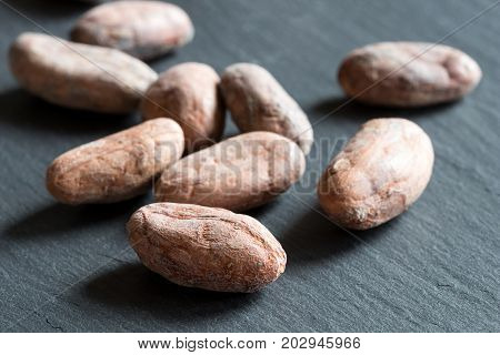 Raw Cacao Beans On A Dark Background