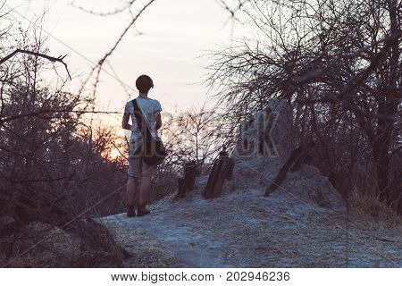 Tourist Walking In The Bush And Acacia Grove At Sunset, Bushmandland, Namibia. Adventure And Explora