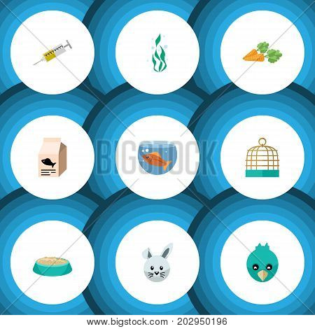 Flat Icon Animal Set Of Fish Nutrient, Root Vegetable, Fishbowl And Other Vector Objects