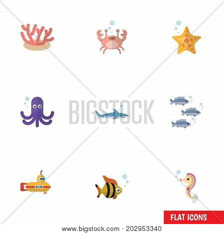 Flat Icon Marine Set Of Cancer, Hippocampus, Algae And Other Vector Objects