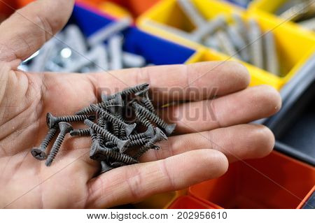 Screws On The Palm, Background Sealed Screws In Colored Pots,