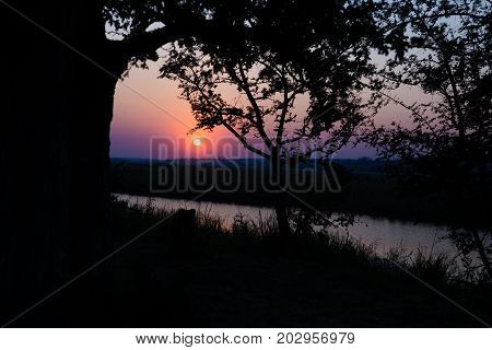 Colorful Sunset In The African Bush. Acacia Trees Silhouette In Backlight. Cold Toned, Blue Purple C