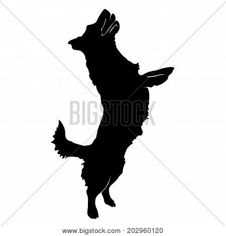 Silhouette of a dog.Vector illustration of doberman pinscher. Bloodhound