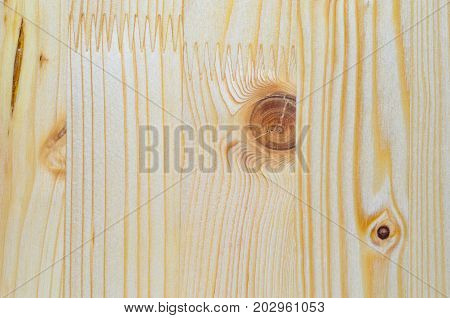 The texture of the glued board. Glued furniture board background. Natural sawn timber texture