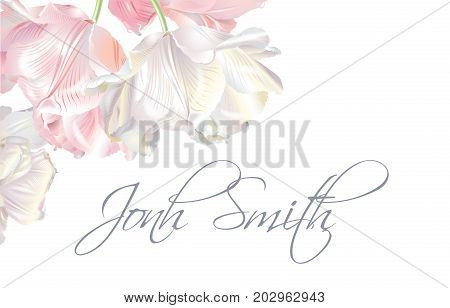 Vector wedding name card with white and pink tulip flowers on white background. Can be used as greeting card, floral design for cosmetic, perfume, beauty care products